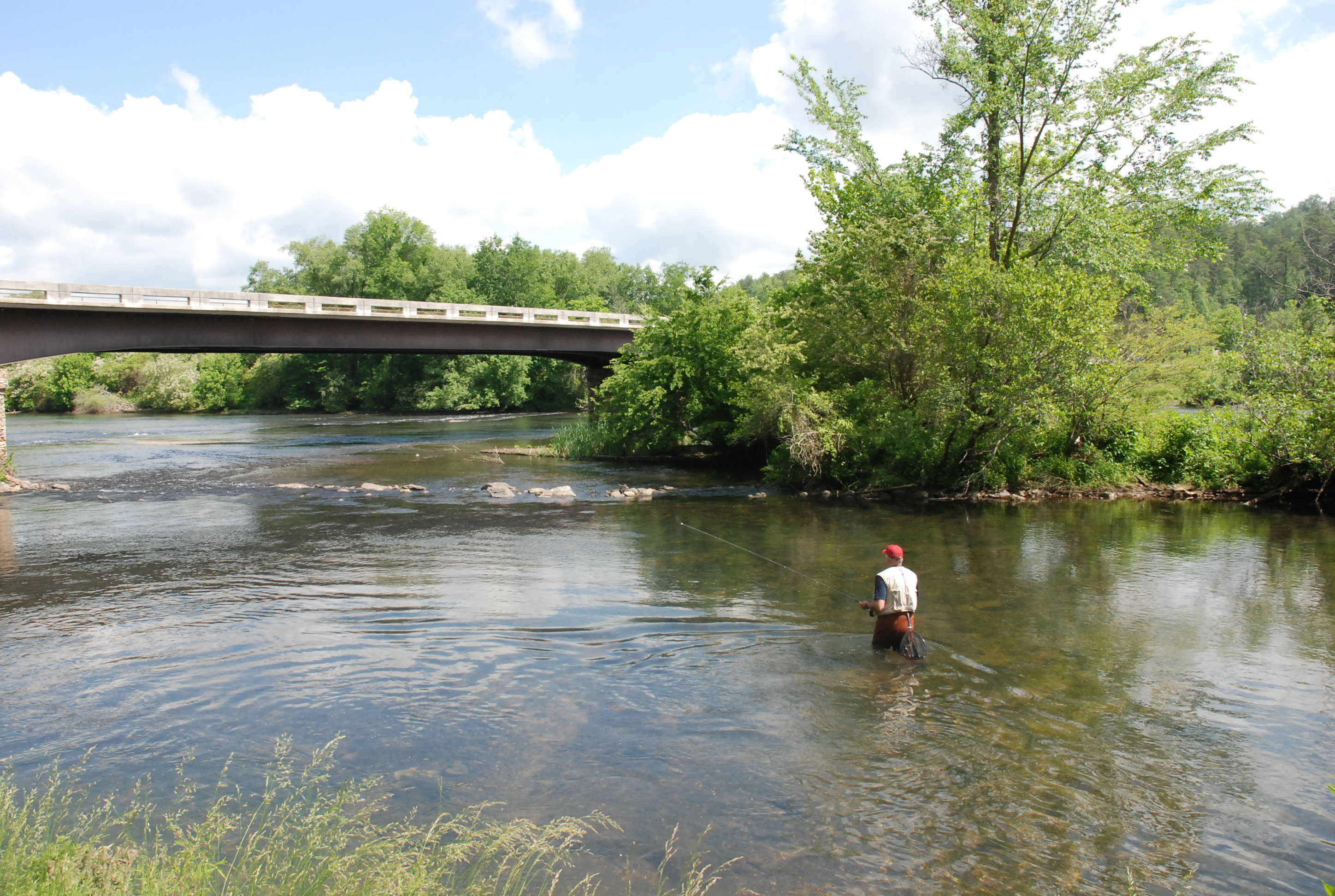 Trout Fishing In Tennessee Map.Fly Fishing Hot Spots In East Tennessee Tn Vacation