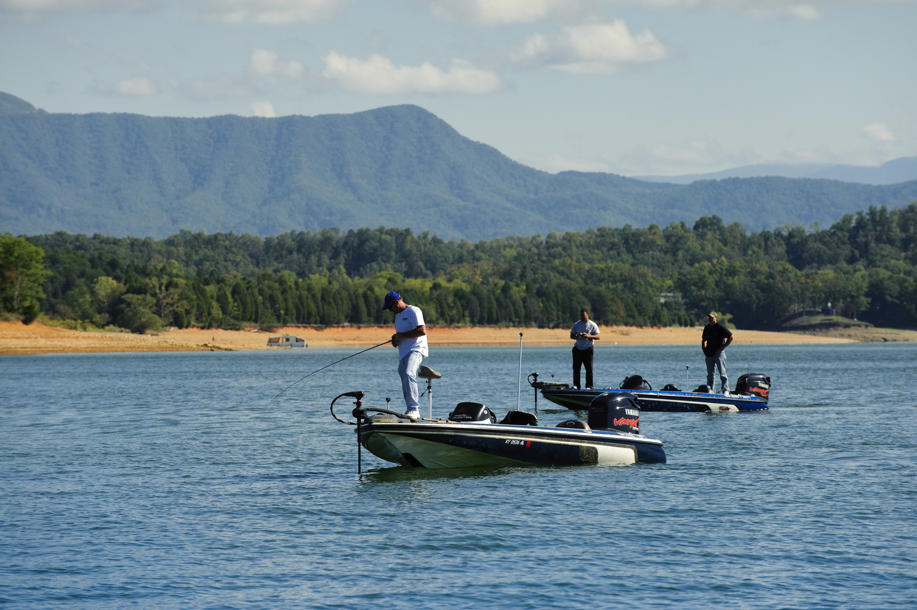 Fish the clinch river for striped bass douglas lake for for Douglas lake fishing