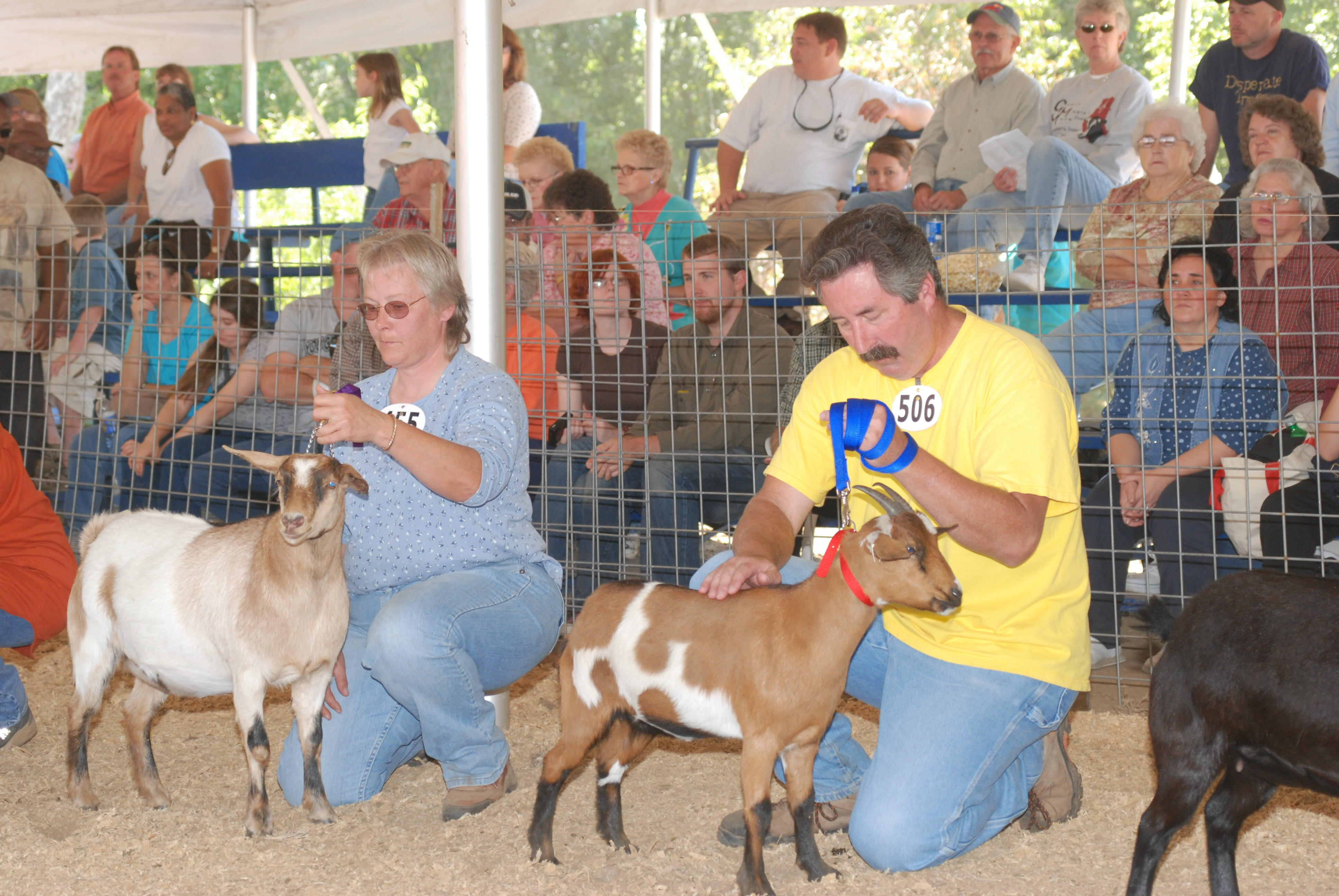 Goats, Music & More Festival, Lewisburg