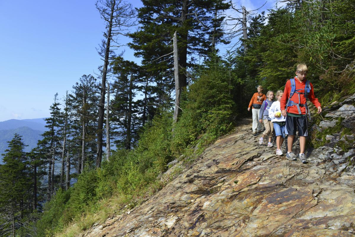 Hike the many trails located in the Great Smoky Mountains National Park
