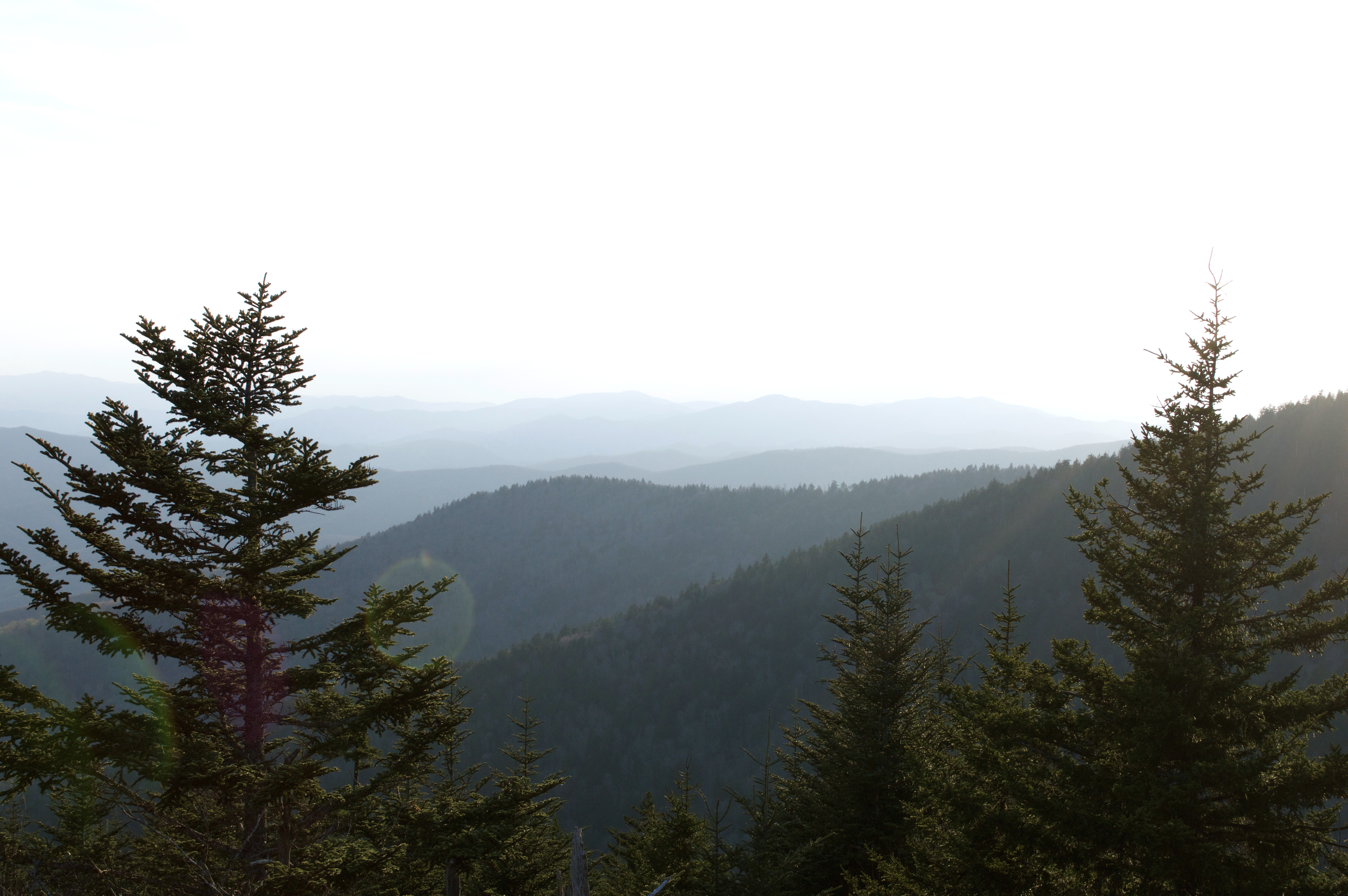 Views at Clingmans Dome trail