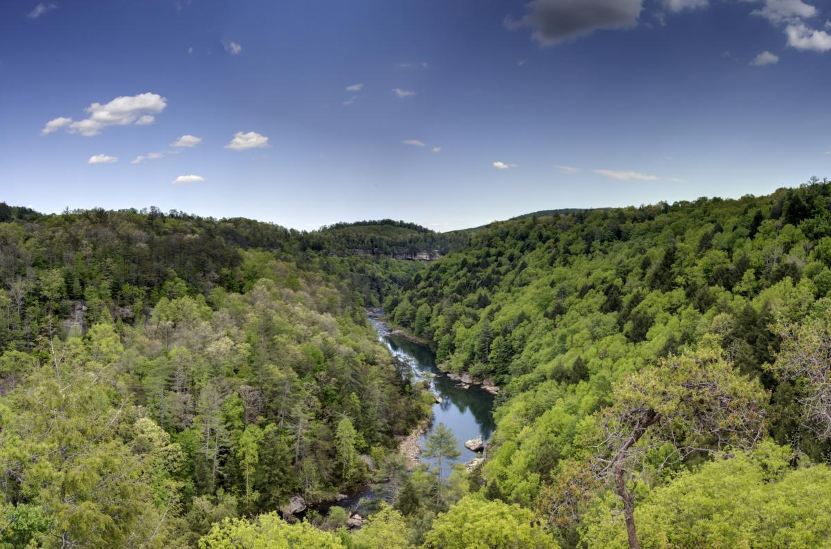 The Obed River is one of the many gems you can experience along the Tennessee Trails & Byways