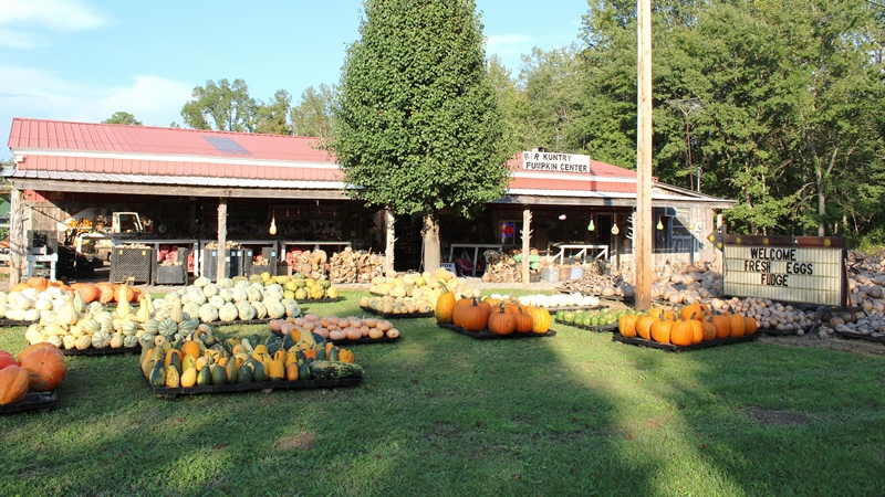 Rr Kuntry Pumpkin Center In Pikeville Tn Tennessee Vacation