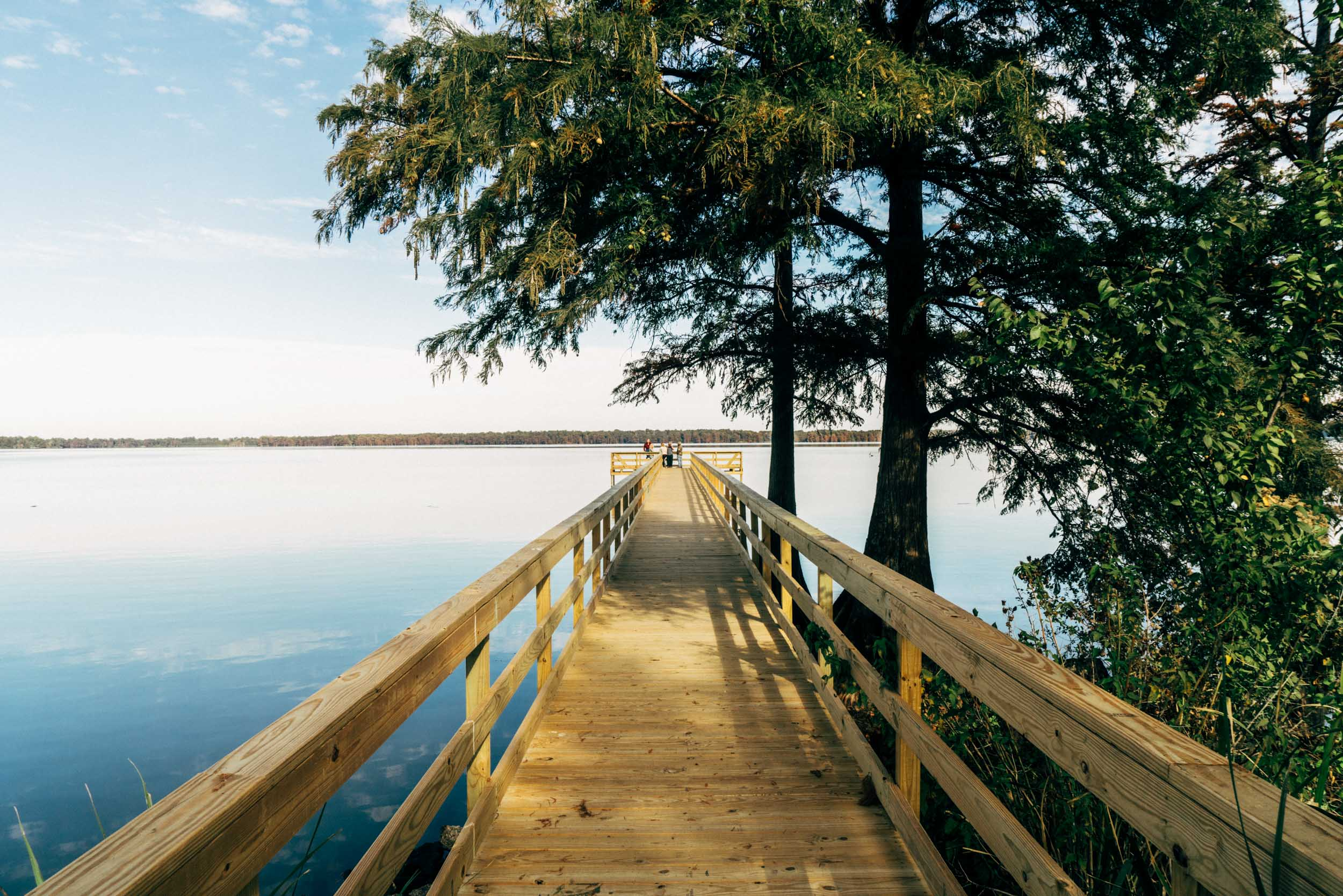 Reelfoot Lake in Tiptonville, TN - Tennessee Vacation