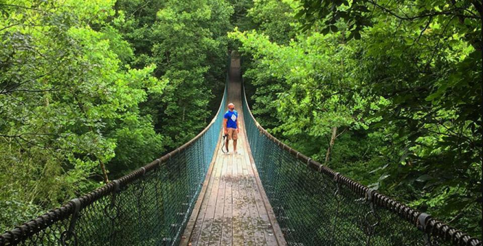 Foxfire Mountain Bridge: Sevierville