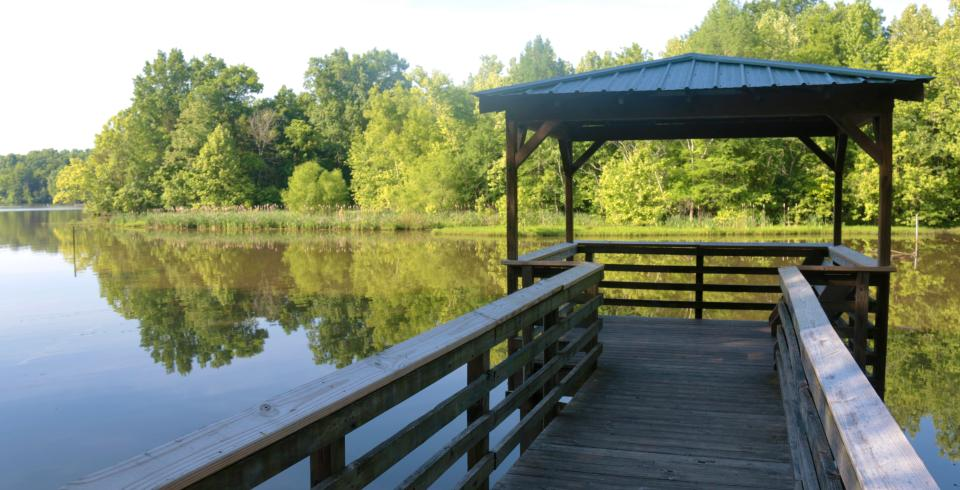 Boardwalk along the water at Bledsoe Creek State Park in Gallatin