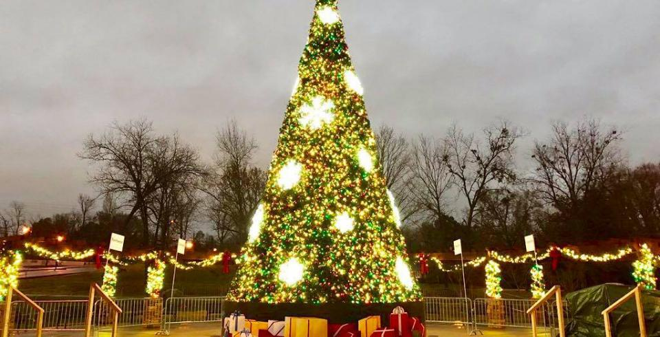 The Christmas tree lit up in Dogwood Park in Cookeville TN