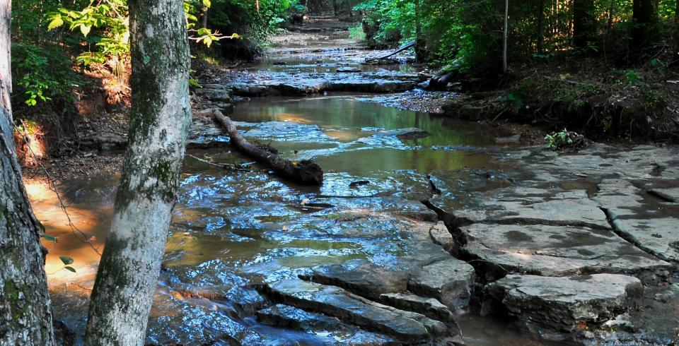 Stream in Rotary Park in Clarksville, Tennessee