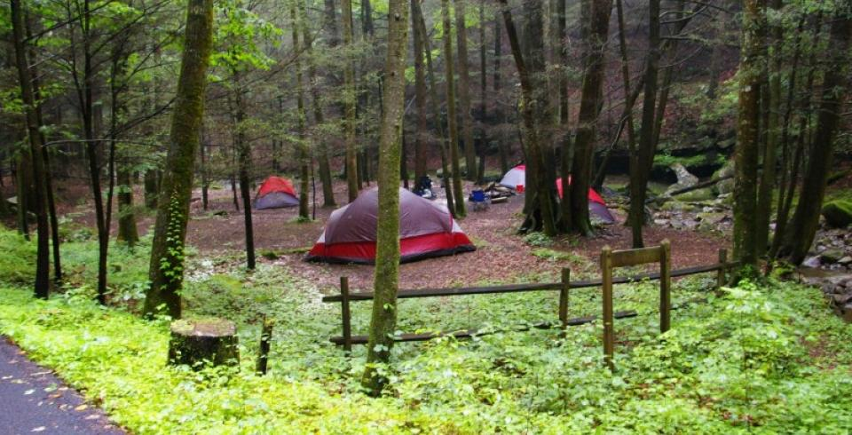 Campsites at Frozen Head State Park