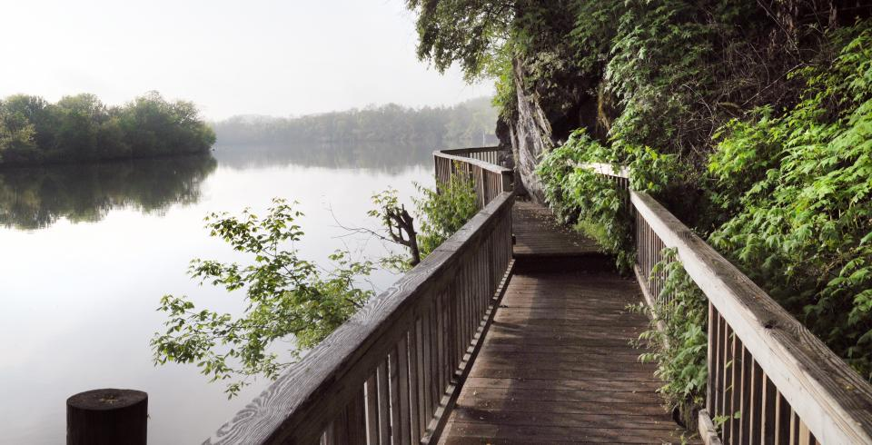 Boardwalk in Knoxville's Urban Wilderness trail system.