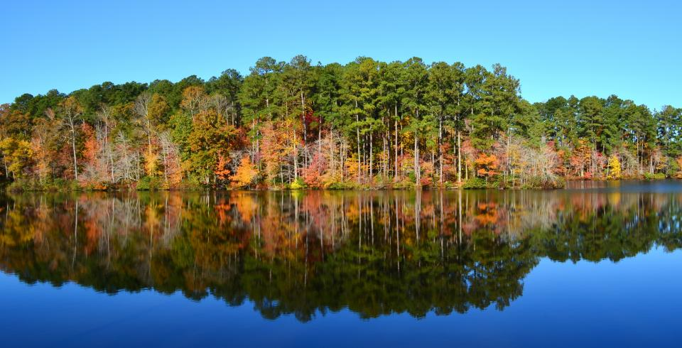 Fall color in the Natchez Trace State Park