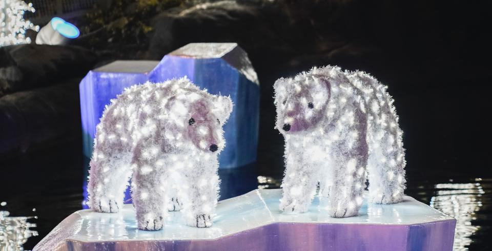Polar bear light up displays in Glacier Ridge at Dollywood