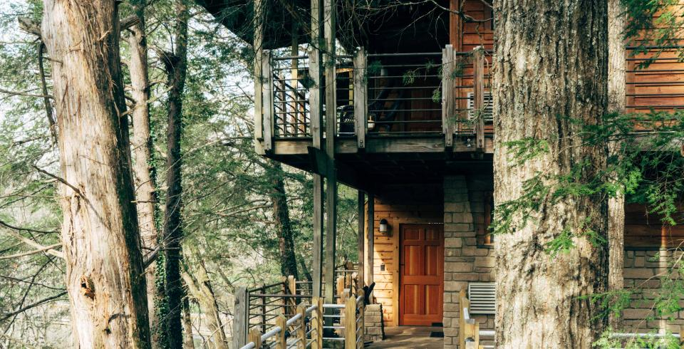 Evins Mill lodging with tree views in Smithville, Tennessee