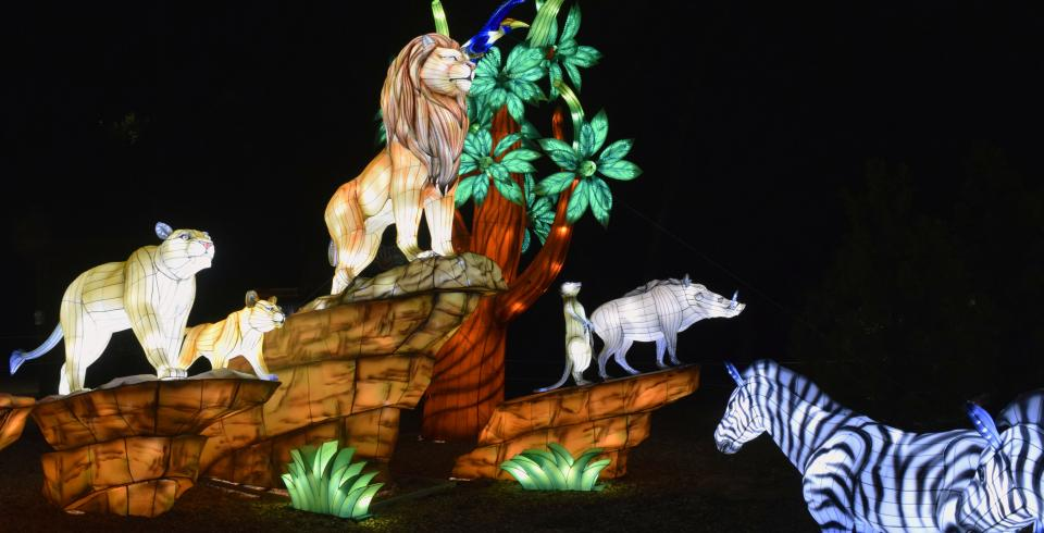 Lantern animals displayed at Zoolumination