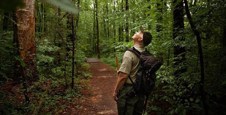 A ranger on a trail in a Tennessee state park.