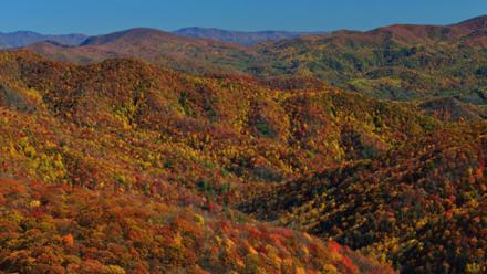 tennessee,-for-more-to-see