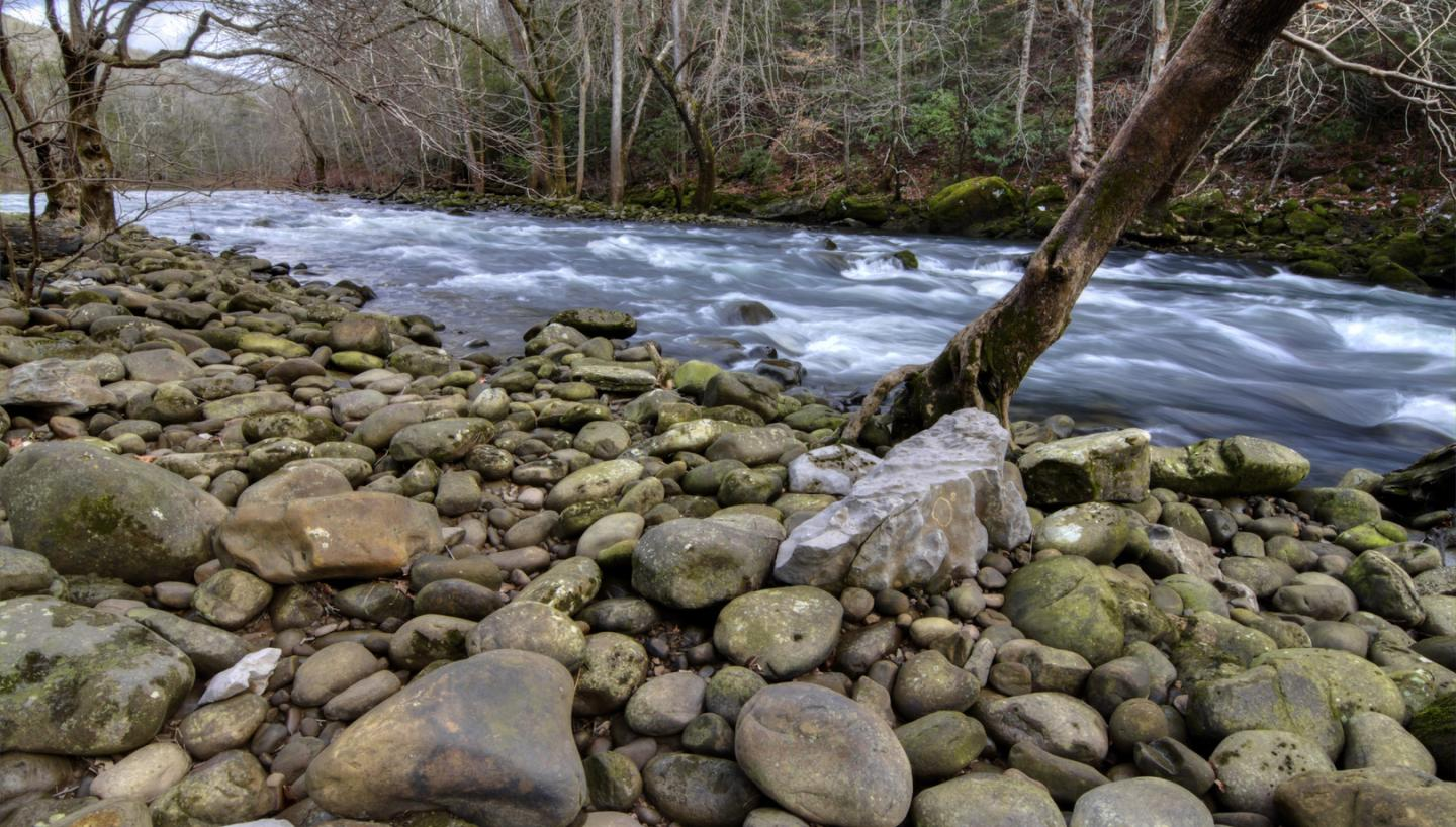 Trout and Bass are Calling In Tennessee's Harpeth and Caney Fork This Fall