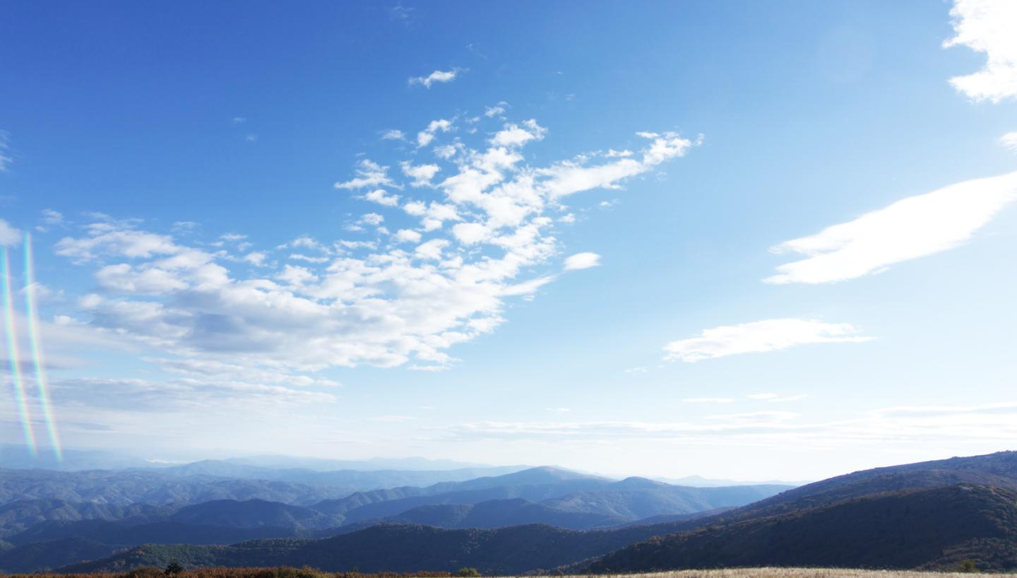 A Walk Through Tennessee's Roan Mountain State Park