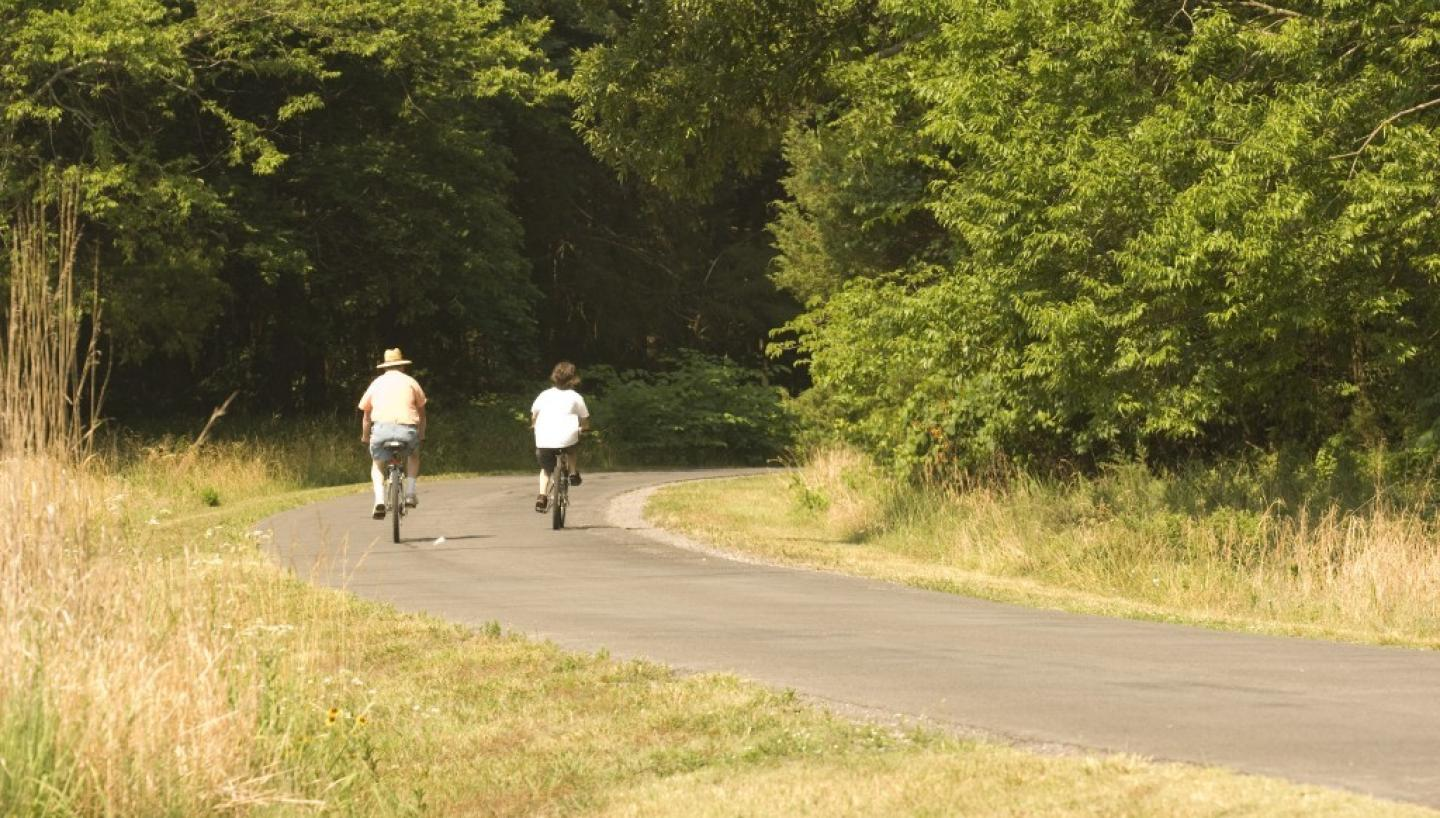 Hike, Bike, or Bounce Your Way to Health in Tennessee