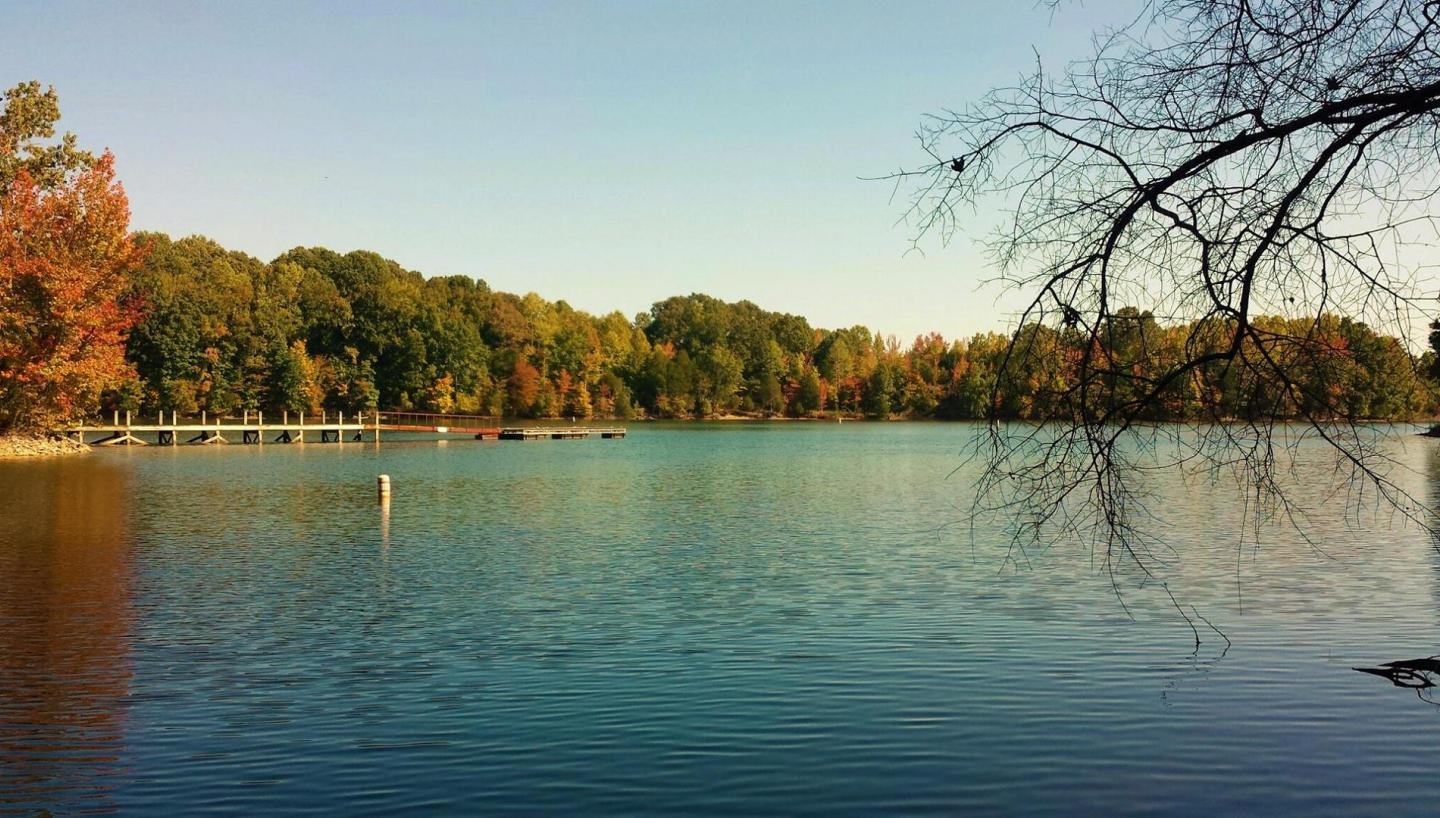 tims ford lake a winter retreat for perfect tennessee fishing rh tnvacation com