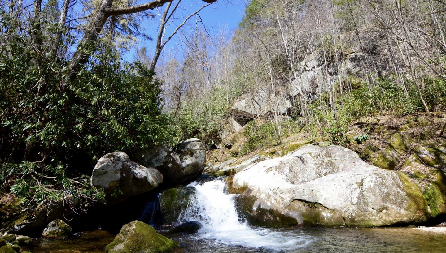 An Outdoorsmen's Dream: Tennessee's Unicoi County