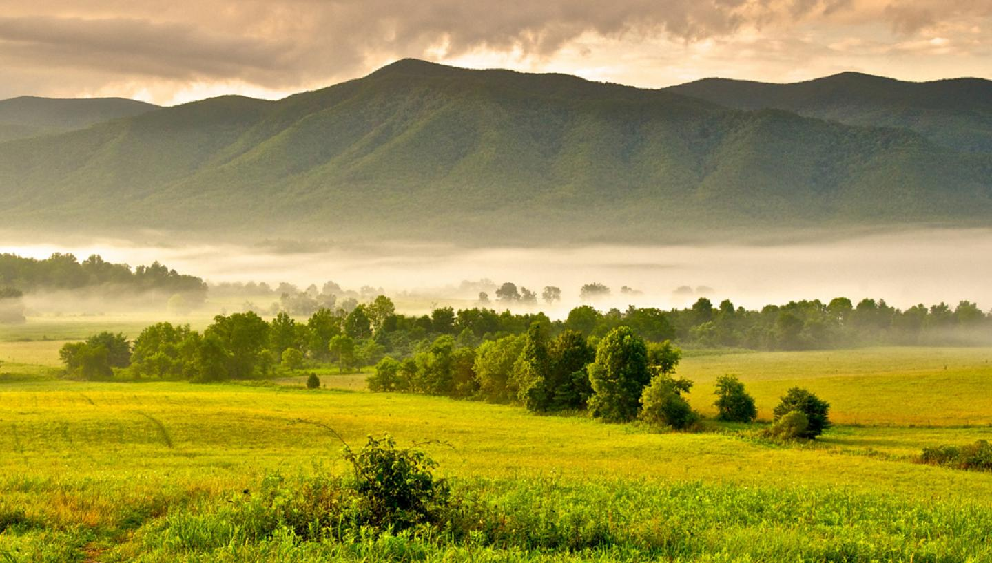 Experience the Great Smoky Mountains in Cades Cove