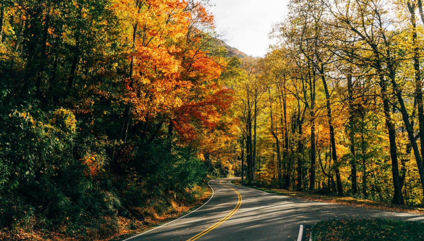 Fall Adventure Awaits in Tennessee
