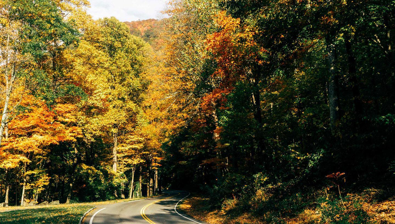 When Autumn Starts in Tennessee