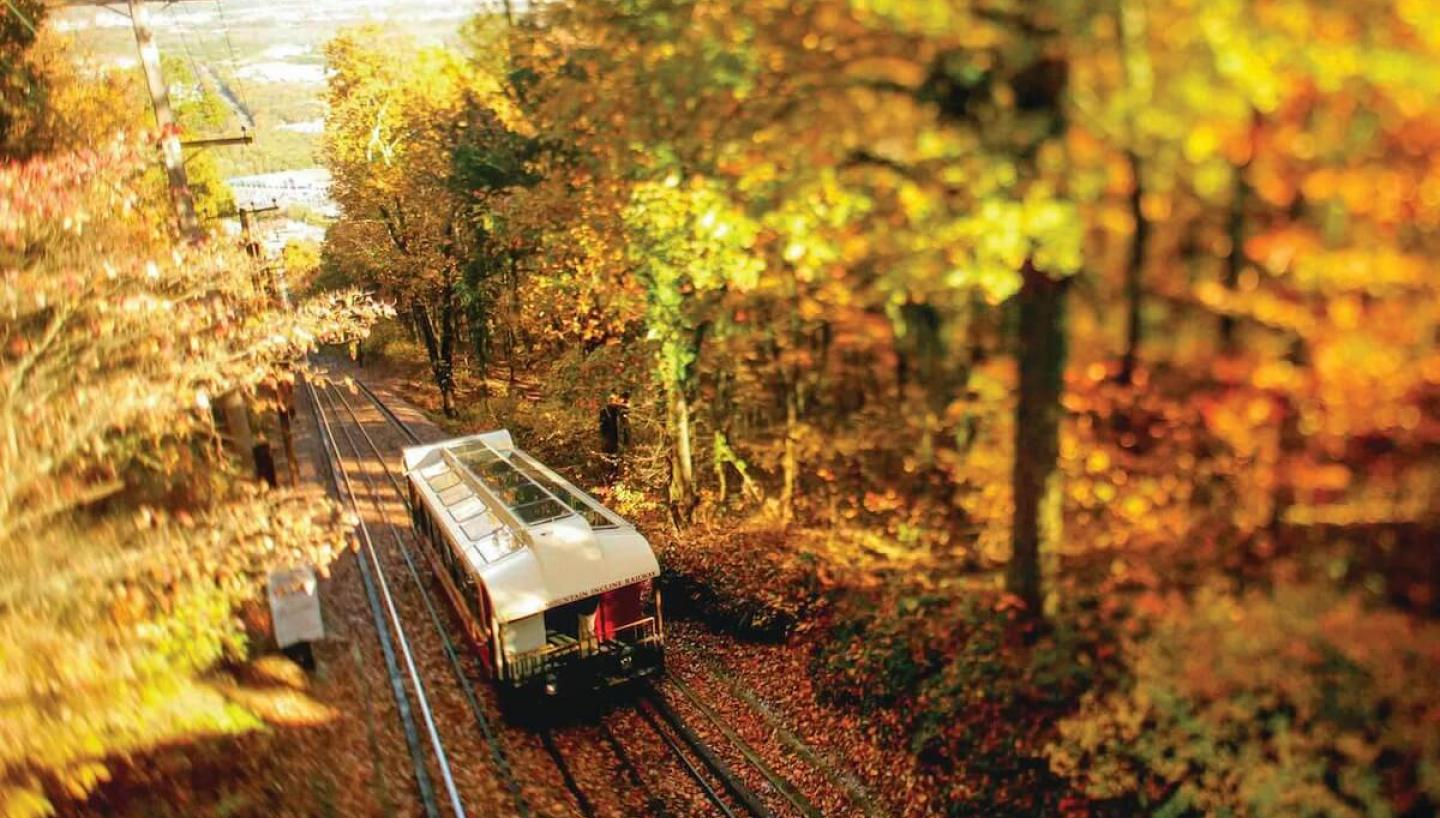 Two Days of Leaf Peeping in Chattanooga
