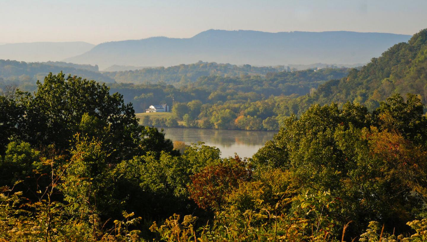 Two Days of Leaf Peeping in Knoxville