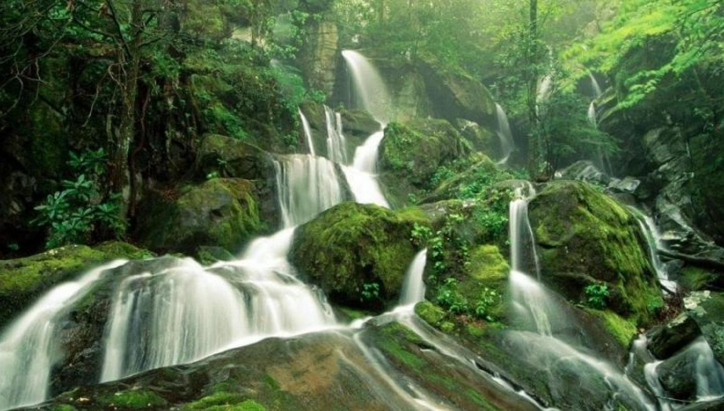 """""""AFAR"""" Lists Smokies as a Must-See National Park"""