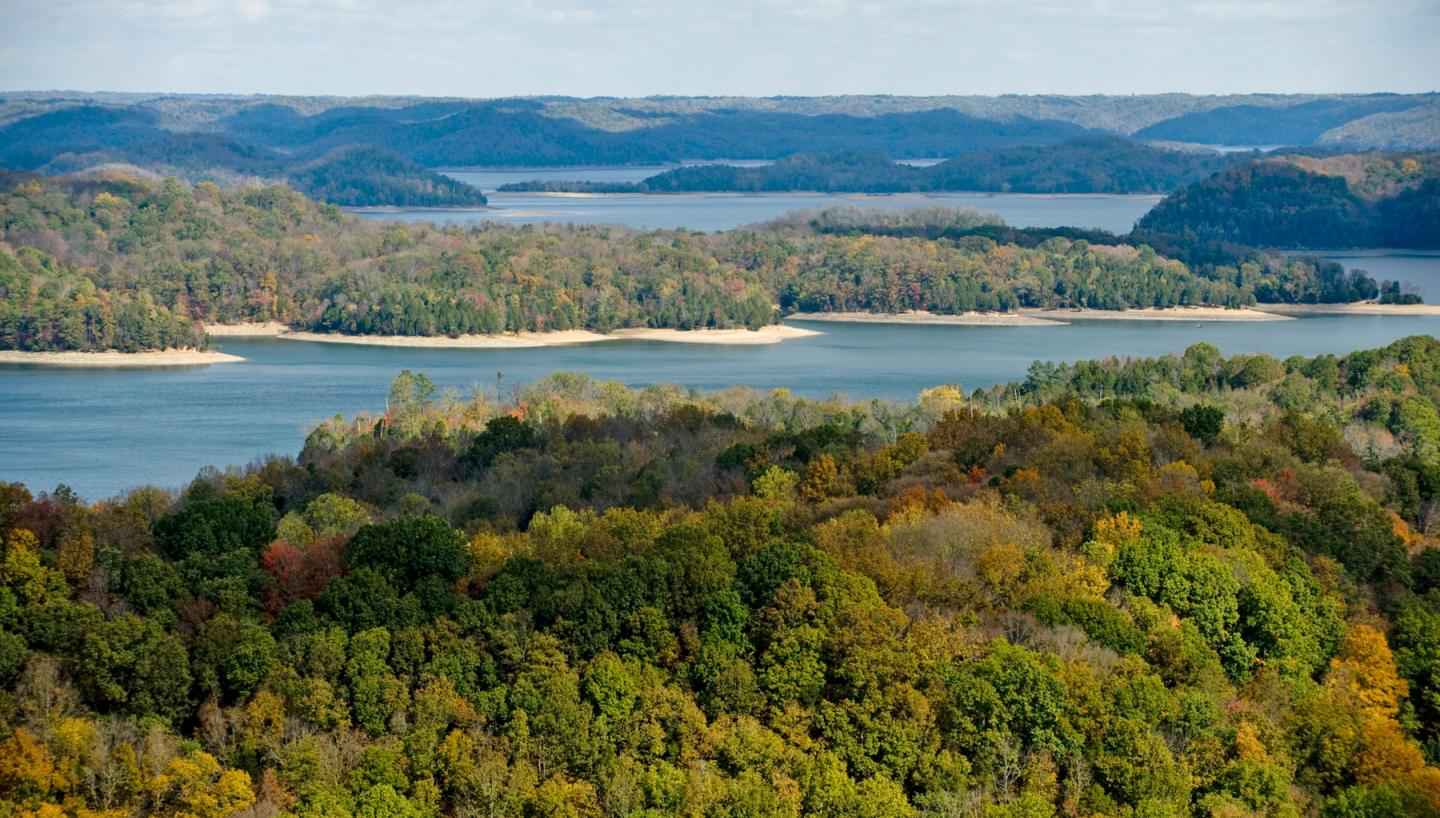 Tennessees Dale Hollow Lake: A Top Spot for Smallies