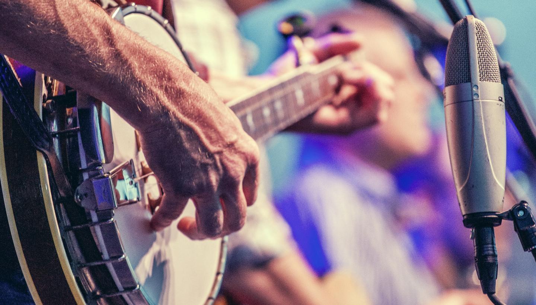 Bloomin' BBQ & Bluegrass Festival