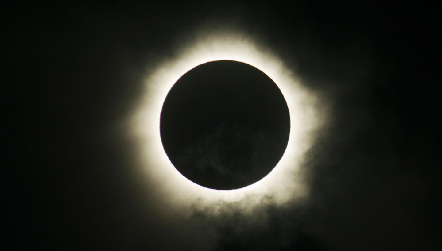 Great American Solar Eclipse: Animal Observation Experience