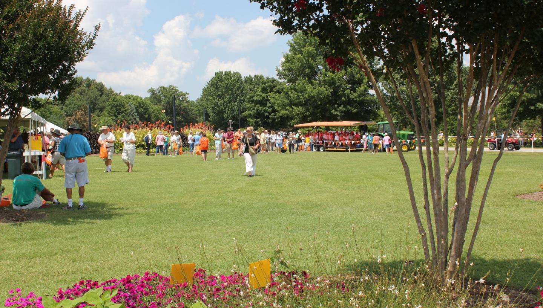 Summer Celebration Lawn & Garden Show