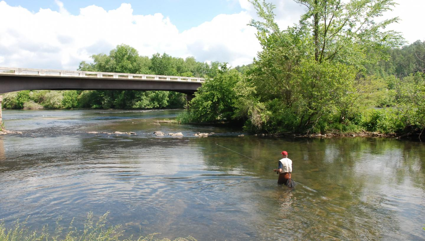Fly fishing hot spots in east tennessee tn vacation for Tennessee trout fishing