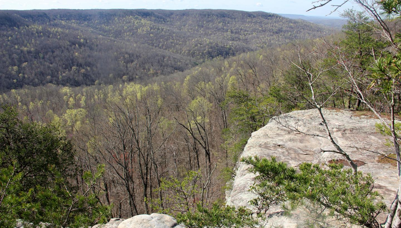 bee rock overlook in monterey  tn