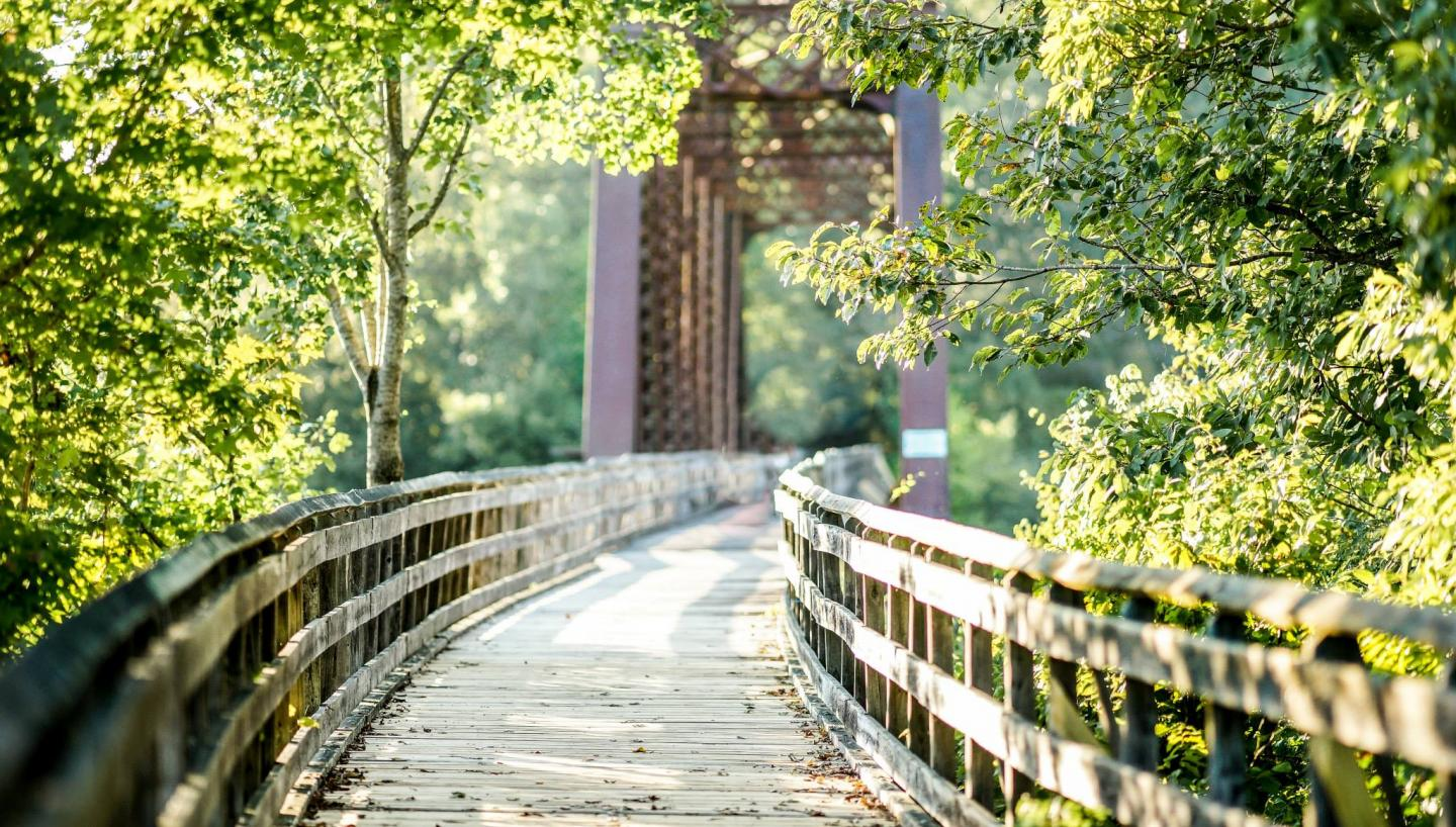Discover Cheatham County