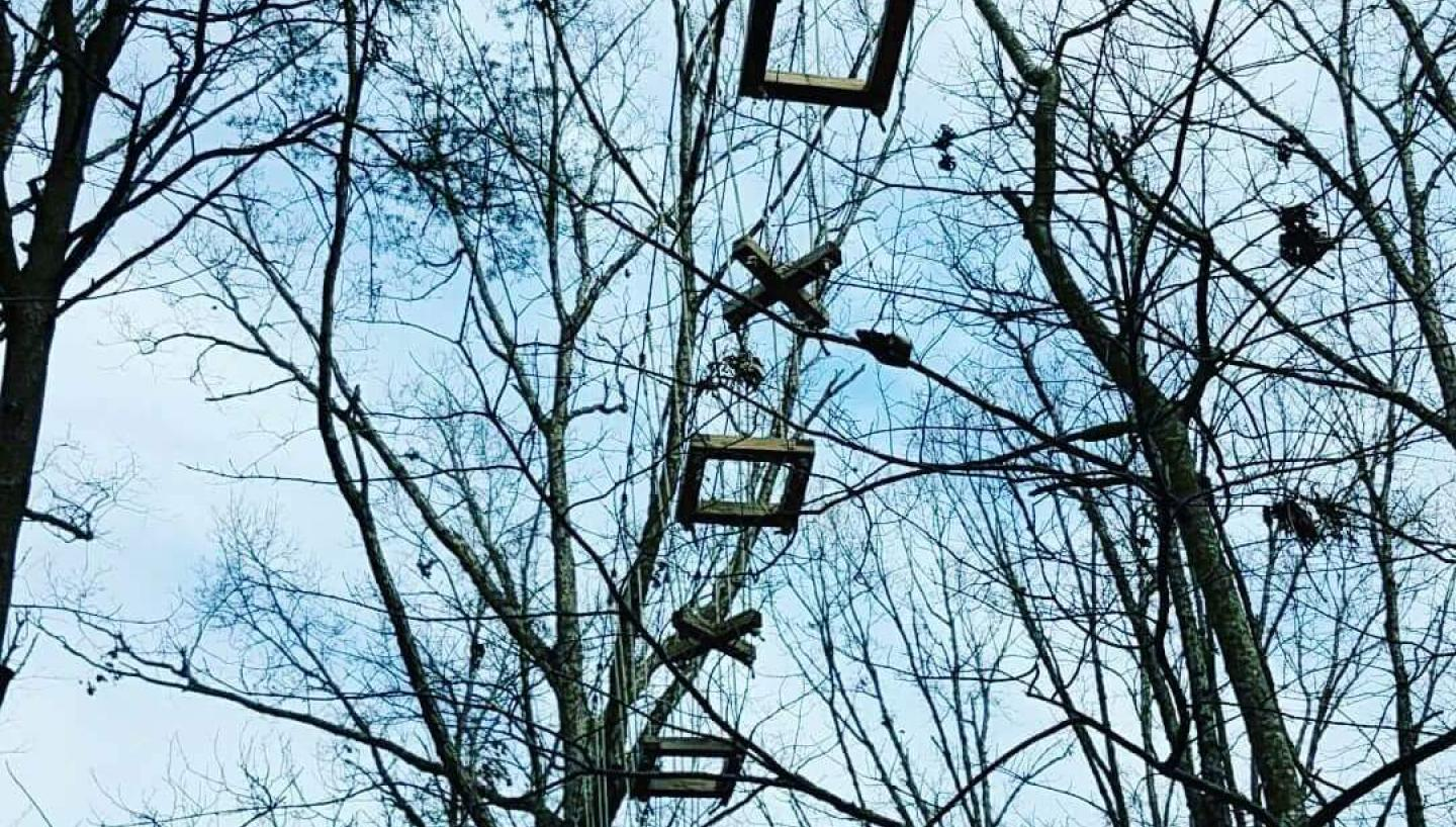 Canopy Challenge Course at Fall Creek Falls State Park in