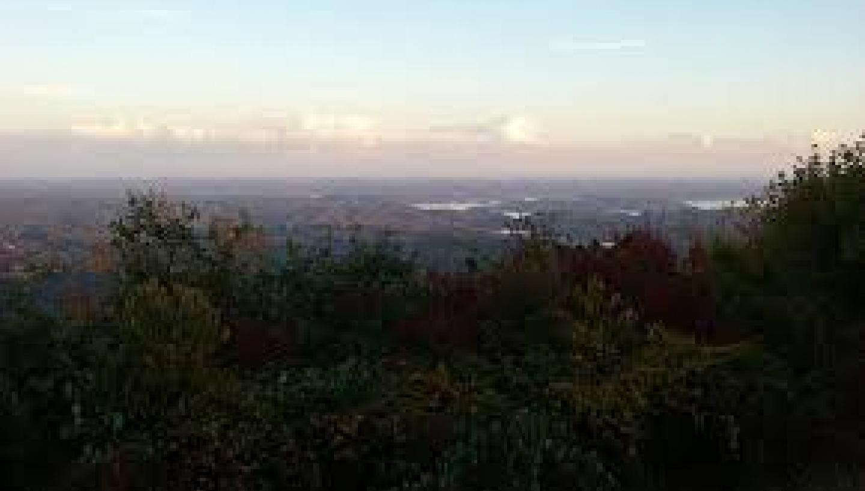 Mount Roosevelt Wildlife Management Area