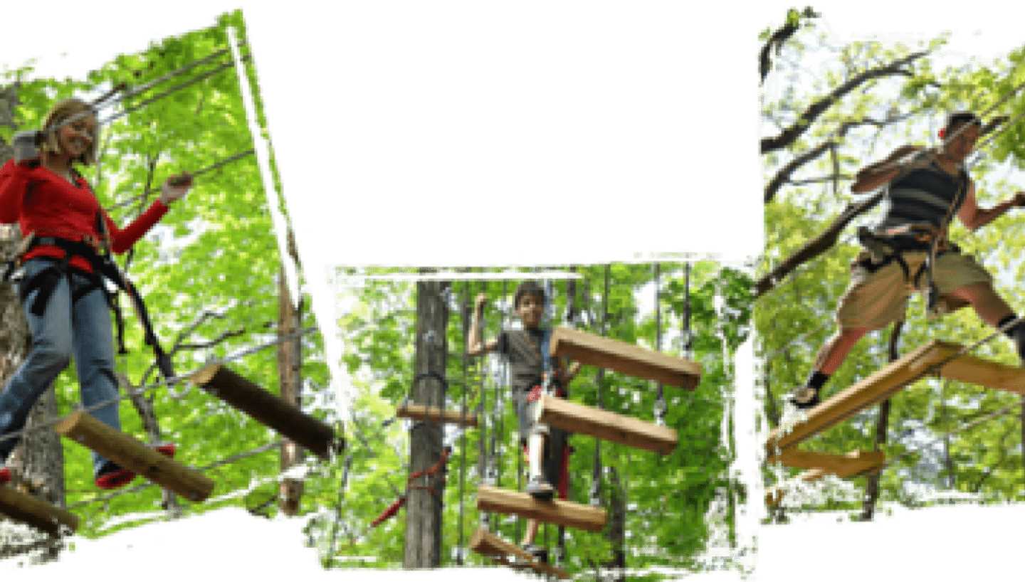 Tree Top Adventure Ropes Course
