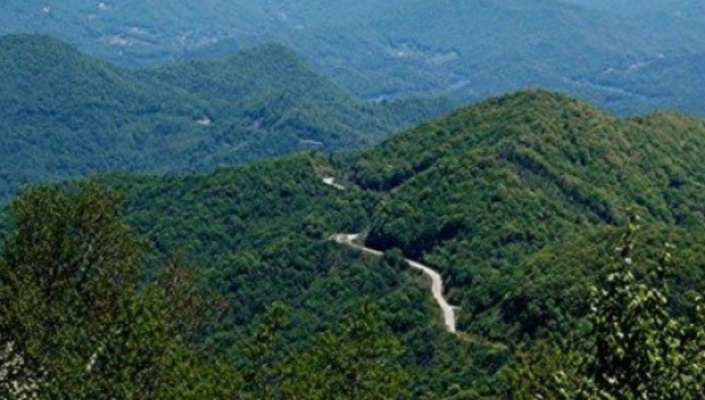 Cherohala Skyway In Tellico Plains Tn Tennessee Vacation