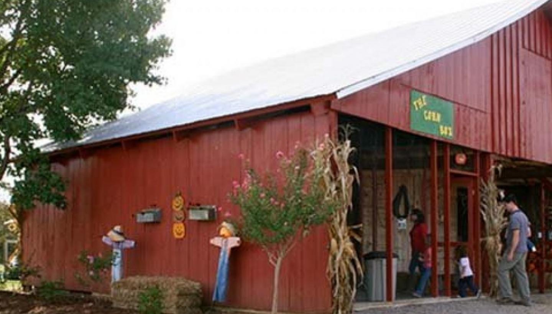 Falcon Ridge Farms