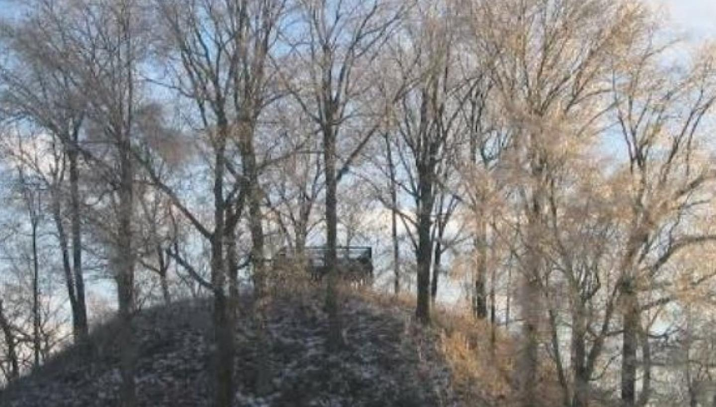 Pinson Mounds State Archaeological Park