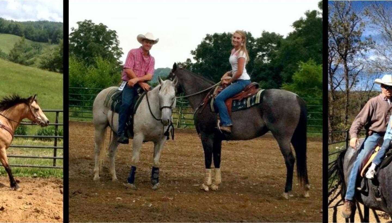 Roan Mountain Riding Company