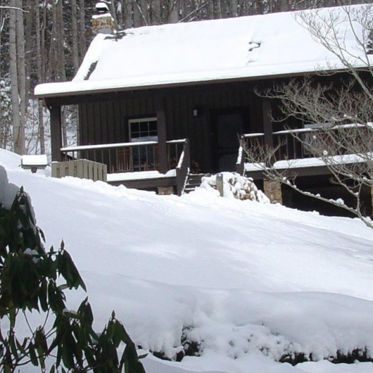 Roan Mountain State Park: Roan Mountain State Park In Roan Mountain, TN