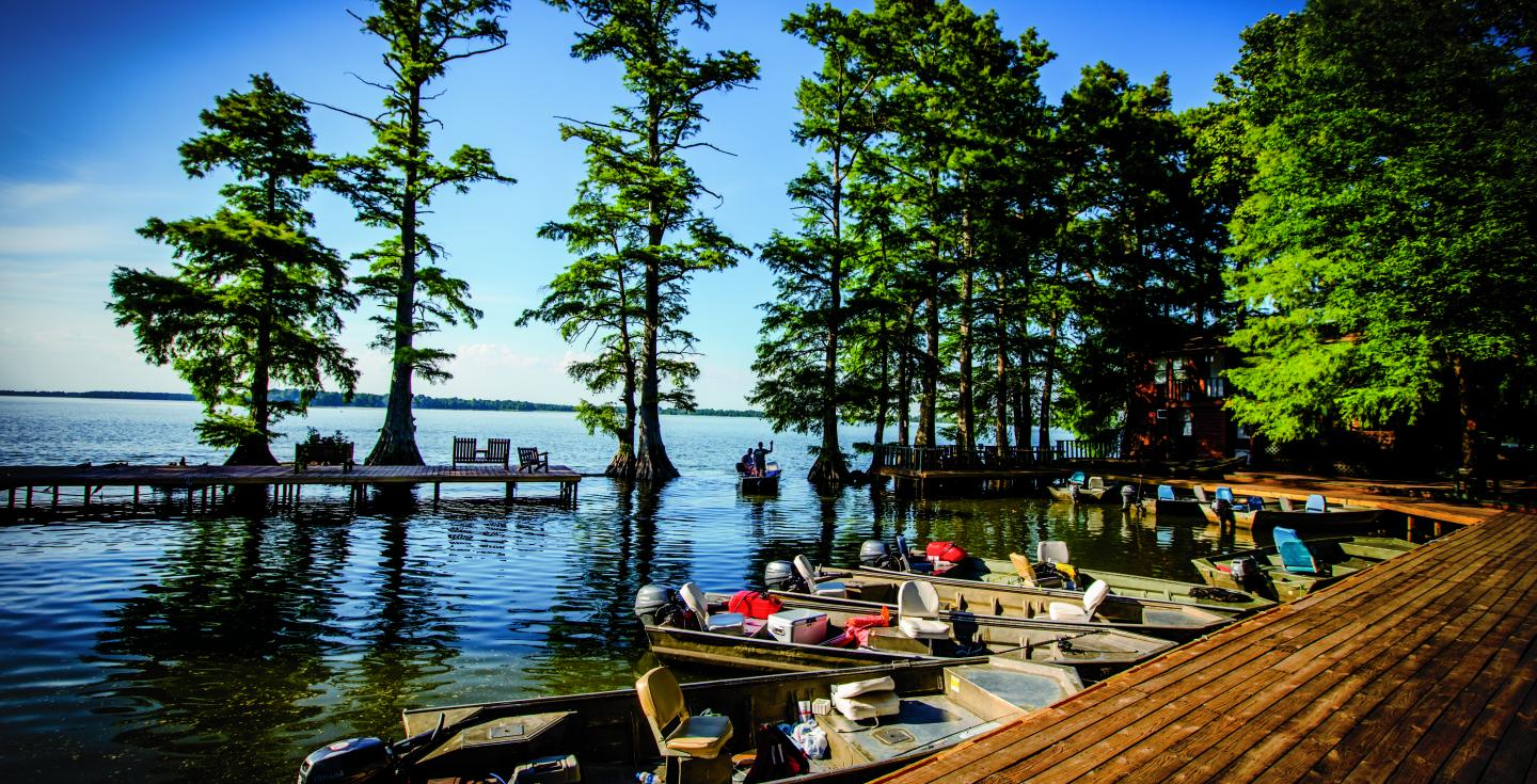 Boats outside of Blue Bank Resort's boardwalk on Reelfoot Lake with sunken cypress trees in the distance.