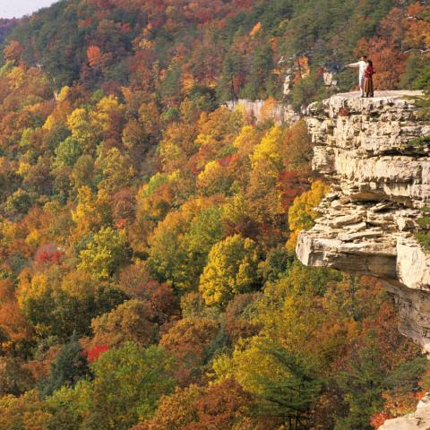 Middle Tennessee Leaf Peeping