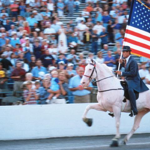 High Step It to Shelbyville for Tennessee Horses and History