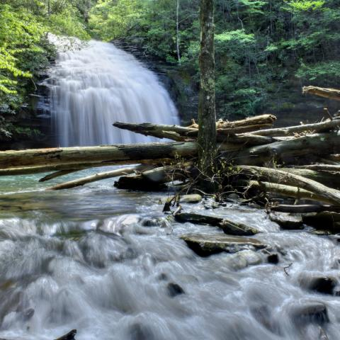 Tennessee Bucket List-Worthy Waterfalls